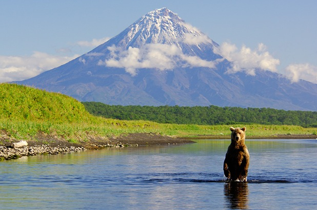 Bear and Kronotsky Volcano